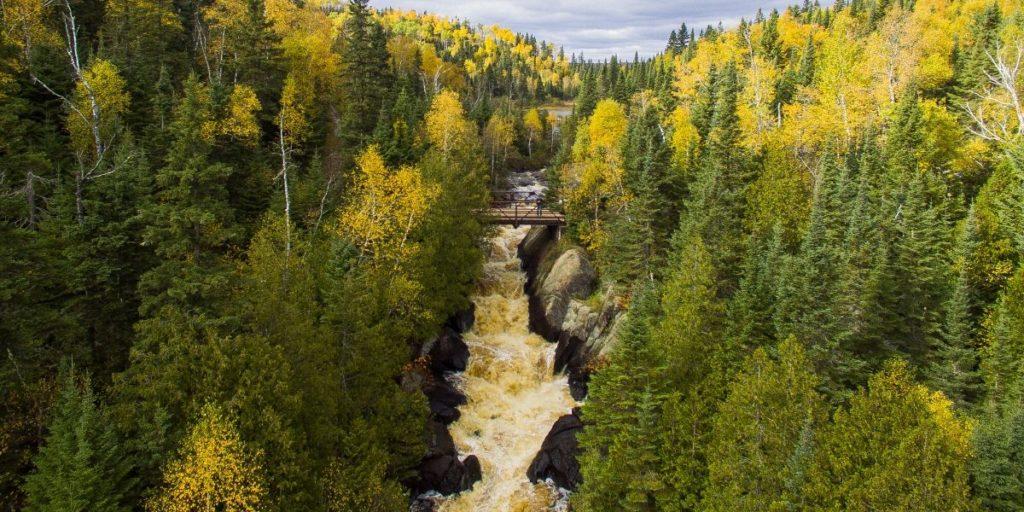 poplar river fall colors